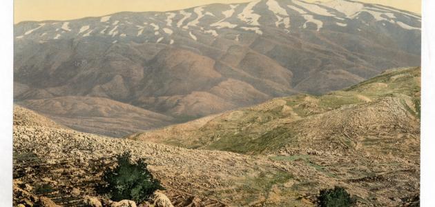 أين يقع جبل الشيخ قلعه الكويت الموقع الشامل لكل ما تبحث عنه